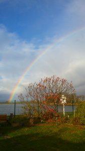 Rainbow Nov 9.jpg